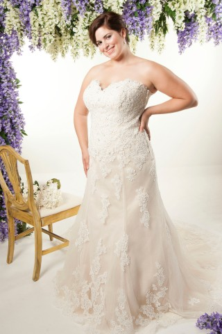 champagne plus size wedding dresses new fitted lace trumpet wedding gowns 2544