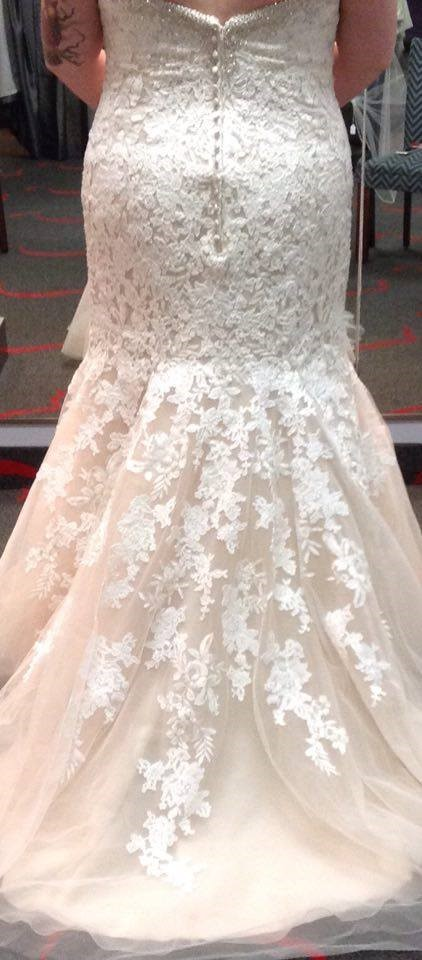Bridal gown plus size wedding dresses in redlands for Plus size wedding dresses houston tx