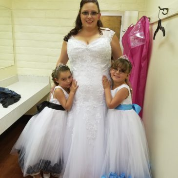 Cassie's V-neck Fitted Wedding Dress