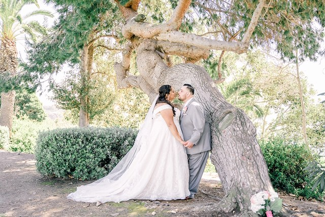 plus size bride and groom by tree