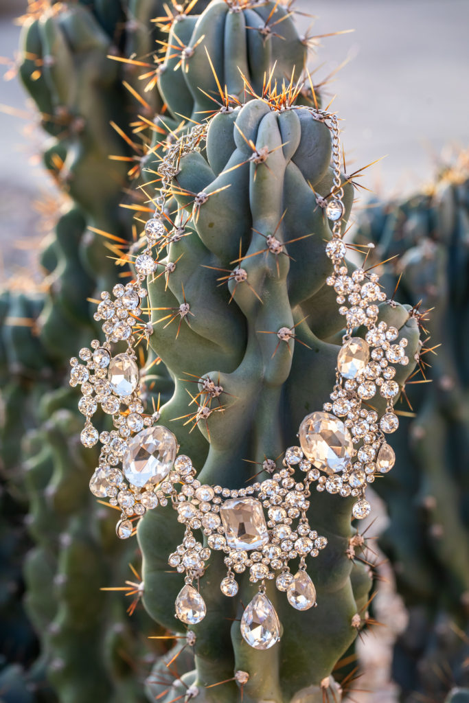 big rhinestone necklace on a cactus